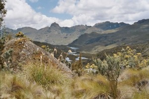 Cajas N.P. Photo Hans Peels 2004