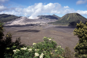 Mount Bromo Photo Vincent Tepas 2002