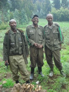 Guides Gorilla Tracking Photo Hennie Sluimer 2008